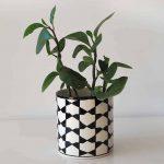 black-and-white-pattern-plant-pot