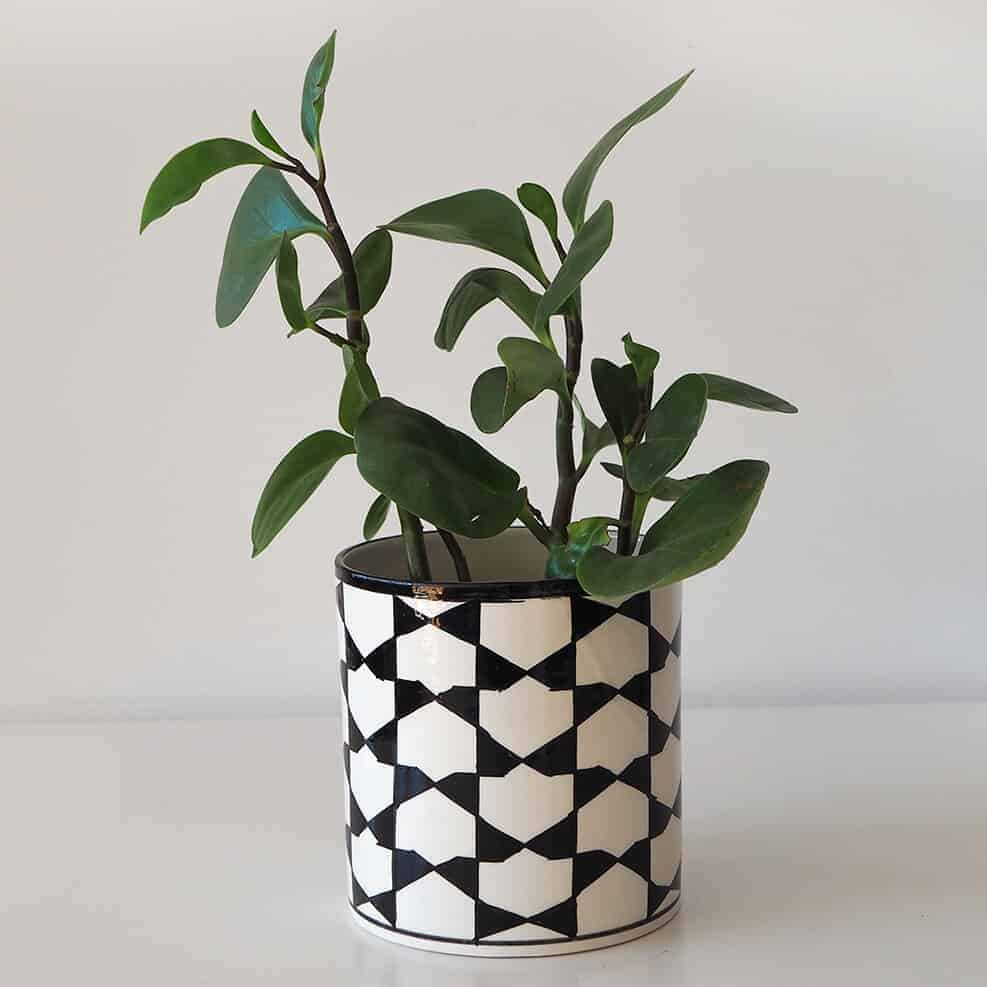 black-and-white-pattern-plant-pot