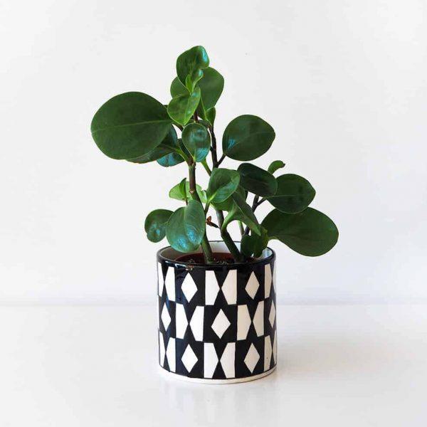 black white diamond pattern vase