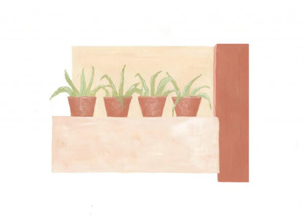 the cacti painting