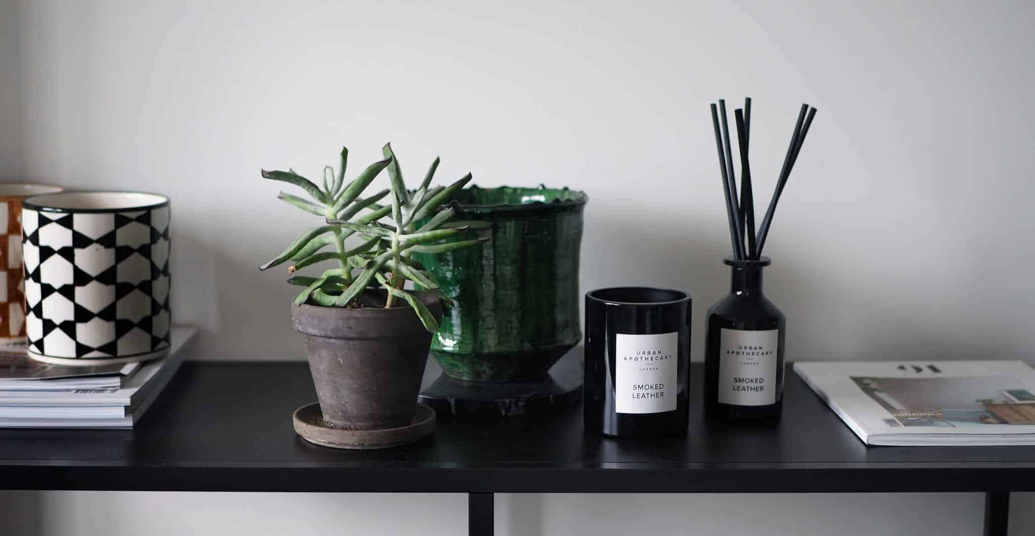 My Favorite Home Accents This Month