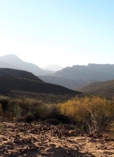 cederberg hills